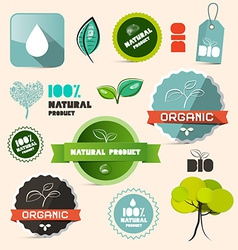 Organic Natural Product Retro Labels - Tags - vector image