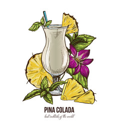 pina colada cocktail mint leaves and orchid vector image