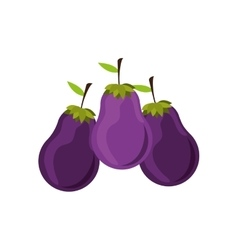 Silhouette colorful set with eggplant vector