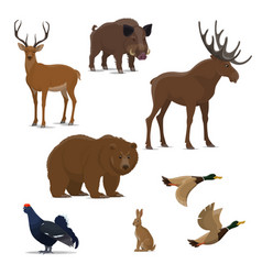 Wild forest animal and bird icon of hunting sport vector