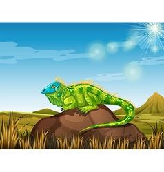 Wild lizard in the field vector image