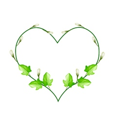 Flower and Leaves Vine in Beautiful Heart Shape vector image