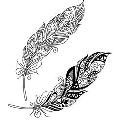 Peerless decorative feather vector