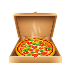 Pizza in box isolated on white vector
