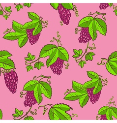 Seamless pattern with grape and leaves vector