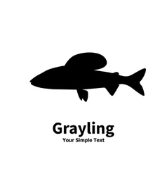 Silhouette of grayling vector