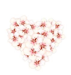 bouquet sakura pink flowers in shape heart vector image