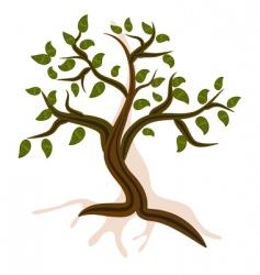 mountain tree vector image