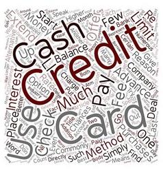 Cash Advances And Credit Card Checks A Closer Look vector image vector image