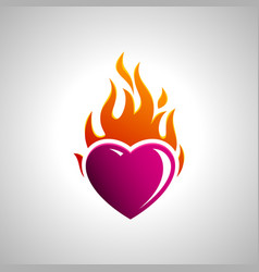 burning heart image vector image
