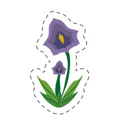 cartoon pansy flower spring image vector image