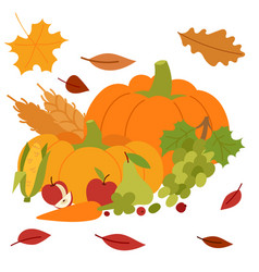 Fresh pumpkin thanksgiving decorative seasonal vector
