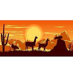llamas wildlife background vector image