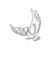 one single line drawing strong eagle bird vector image