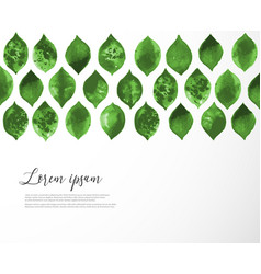 Pattern with green leaves on white background and vector