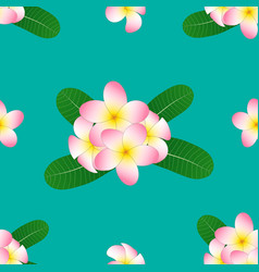 Pink plumeria frangipani on green teal vector
