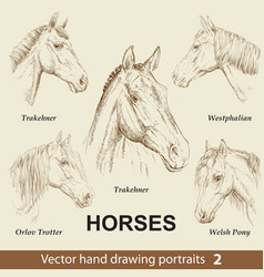 Set hand drawing horses 2 vector