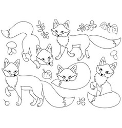 Set of cute cartoon foxes vector