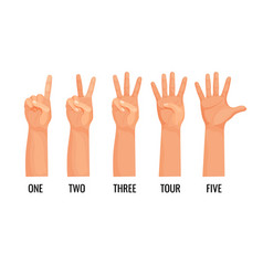 Counting hands show figures count one two three vector