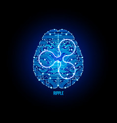 Crypto currency ripple on brain background vector