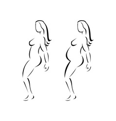 Female Line Drawing vector