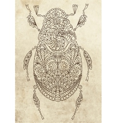 floral bug vector image