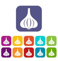 garlic icons set flat vector image