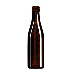 Hand drawn stout beer bottle isolated vector