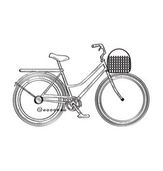 isolated bicycle sketch vector image