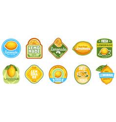 Lemonade label natural lemon juice fresh fruits vector