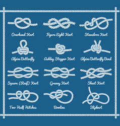 set of rope knots hitches bows bends part 1 3 vector image