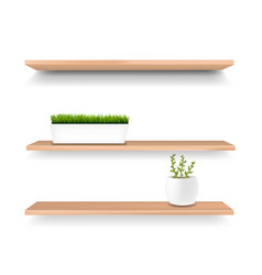 wooden shelf and pot isolated white background vector image