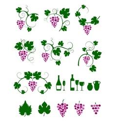 Grape vines design elements set vector image