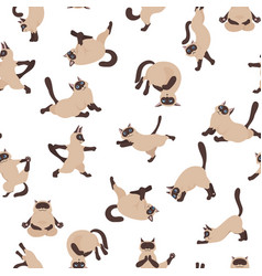 Cats yoga siamese cats seamless pattern different vector