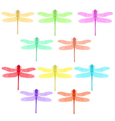 colorful stilized dragonfly insect logo design vector image