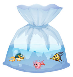 cute fishes in plastic bag cartoon isolated vector image