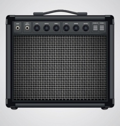 guitar combo vector image