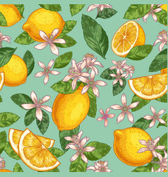lemon blossom seamless pattern hand drawn yellow vector image