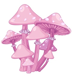 Magic Toadstools vector image