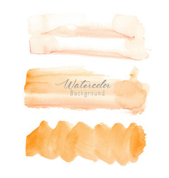 orange brush stroke watercolor vector image
