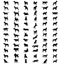 Silhouettes dogs vector