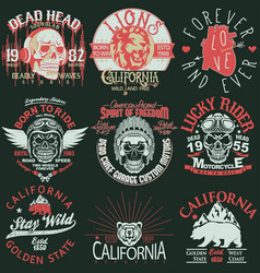 t-shirt stamp graphic set california sport wear vector image vector image