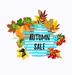 autumn sale banner with leaves pumpkin and berries vector image