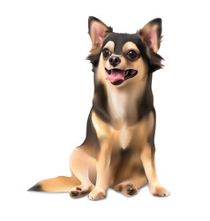 Chihuahua on sitting pose vector