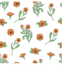 Floral seamless pattern with calendula plants and vector