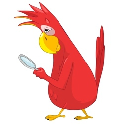 Funny Parrot Search vector