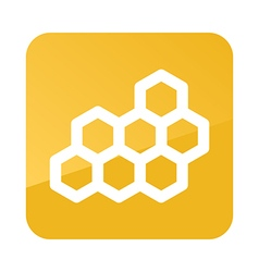 Honeycomb bee icon Garden vector