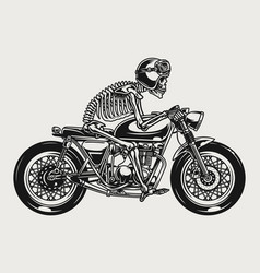 skeleton racer riding brat style motorcycle vector image