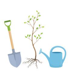 Tree planting vector