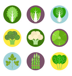 vegetables flat icons set 1 vector image